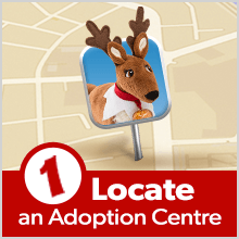 Step 1: Locate an Adoption Center