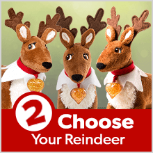 Step 2: Choose Your Reindeer