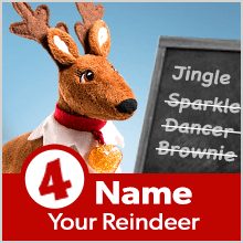 Step 4: Name Your Reindeer