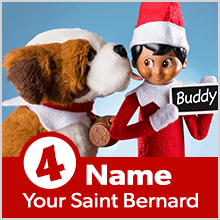 Step 4: Name Your Saint Bernard