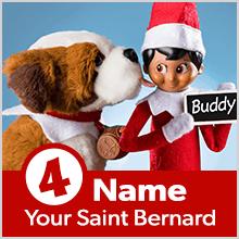 Step 4: Name Your Saint Bernard