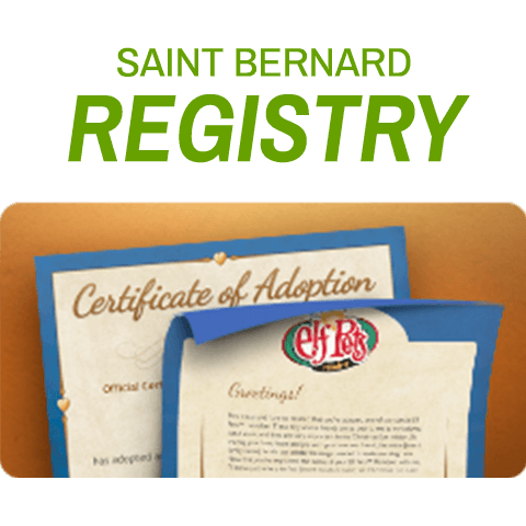 Saint Bernard Registry