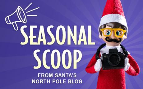 Seasonal Scoop