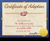Elf Pets Certificate