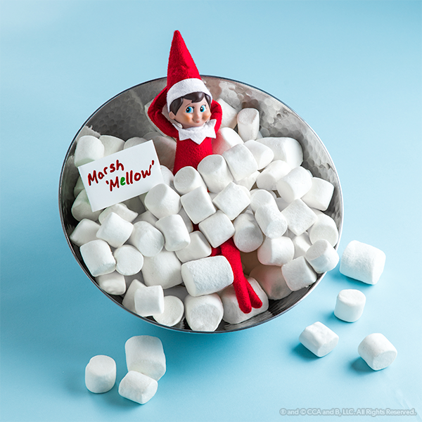 Elf in a bowl of marshmellows