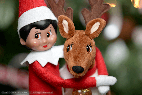 Exciting Activities with Elf Pets®