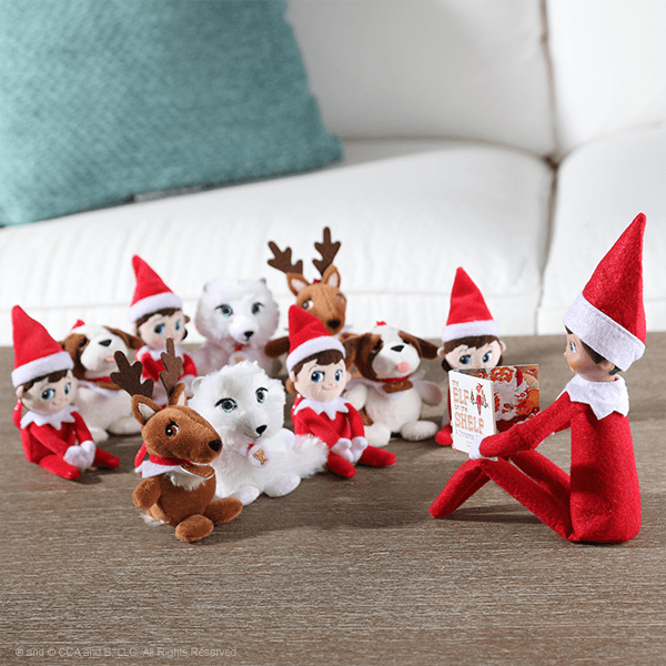Elf reading a book to tiny pets