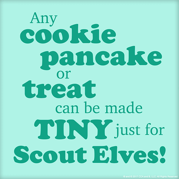 Top Tips for Scout Elves