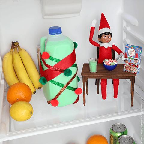 Scout Elf Idea 2