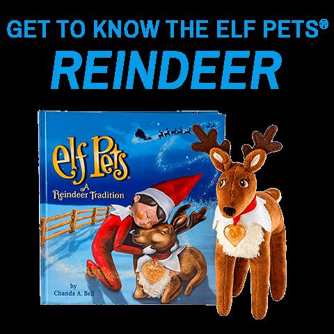Get to know the Elf Pets Reindeer