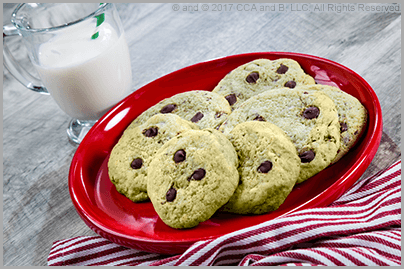 Mighty Mint Chocolate Chip
