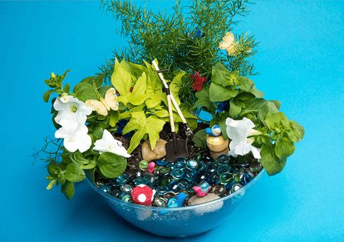 Magnificent Mini Gardens - The Elf on the Shelf