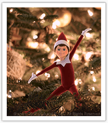 What Do Scout Elves Do at Night? - The Elf on the Shelf