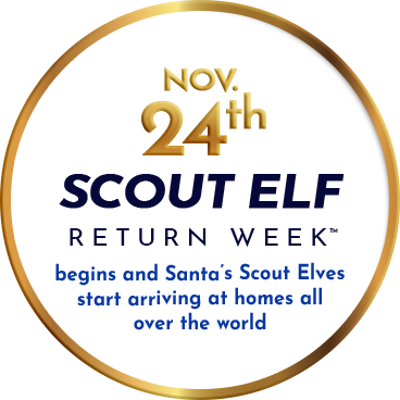 Scout Elf Return Week