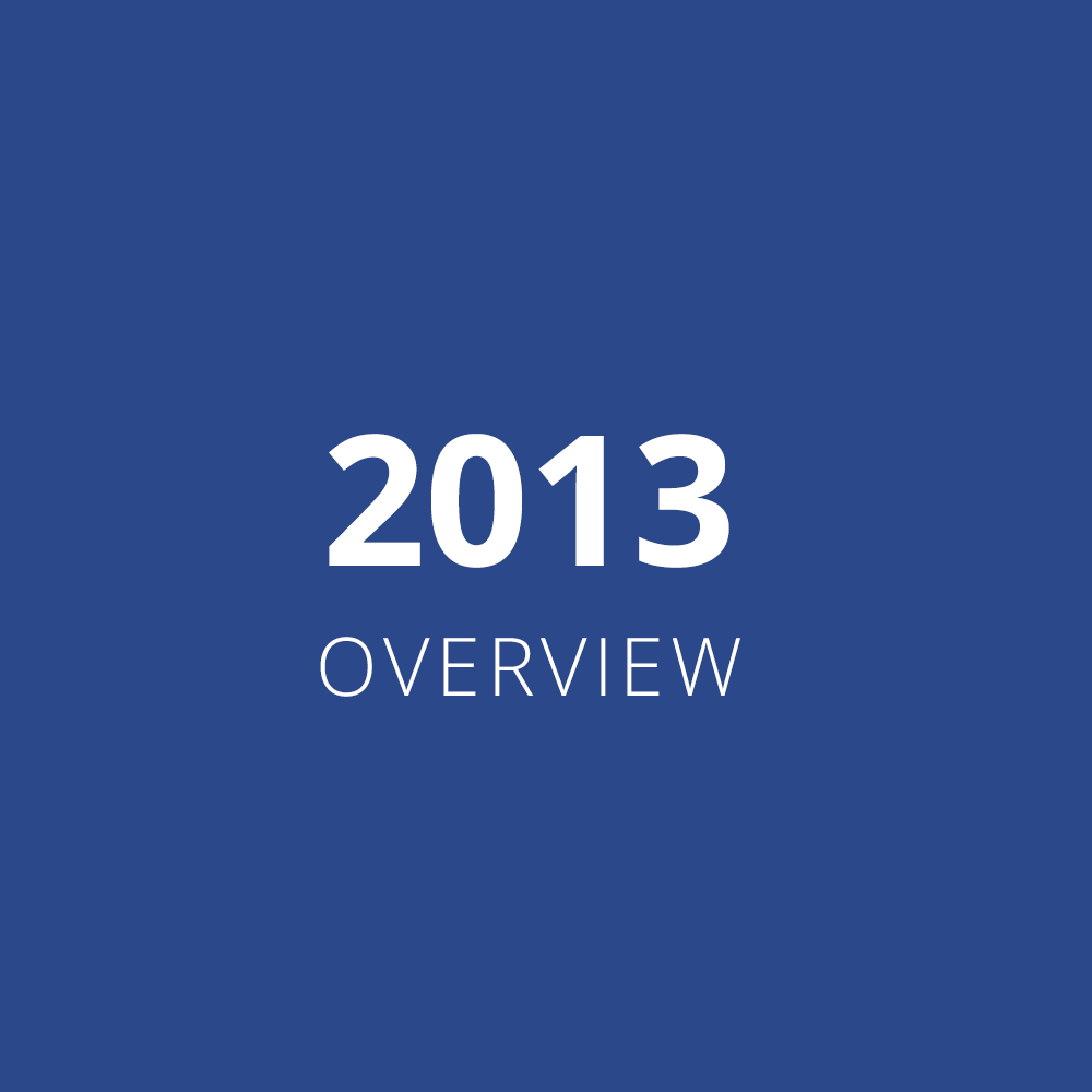 2013 Overview