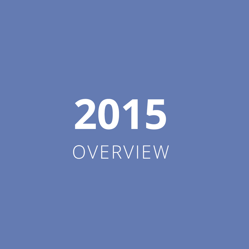 2015 Overview